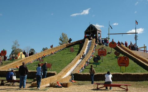 Cox Farms Fall Festival is the place to be this autumn