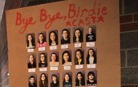 Bye Bye Birdie Comes to the Stage