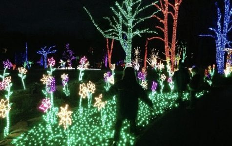 Let's Go: Winter Walk of Lights