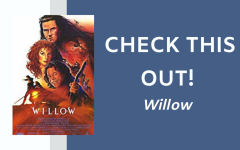 Check This Out: Willow